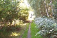 grenzweg-bei-schlagsdorf