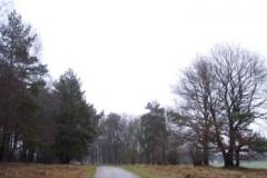 wanderweg-bei-hamdorf