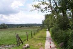 wanderweg-bei-postfeld