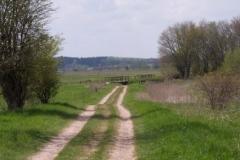 wanderweg-heidmoor