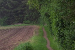 wanderweg-tramer-see